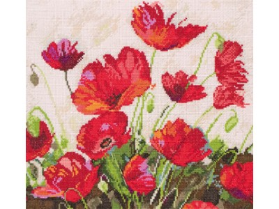 Most loved poppies