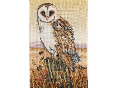 Owl Horizon