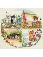 Cats and Seasons