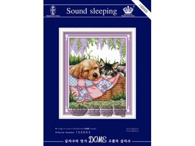 Sound Sleeping