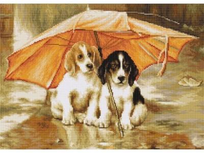 Двойка под чадър